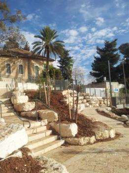 שולחן דוד - ירושלים